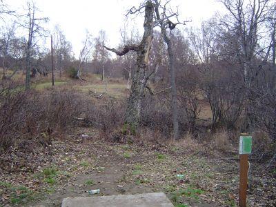 Kincaid Park, Main course, Hole 16 Tee pad