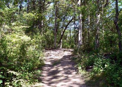 Alimagnet Lake Park, Main course, Hole 9 Tee pad
