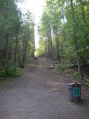 Peters Creek, Main course, Hole 7 Tee pad