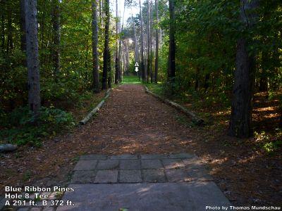 Blue Ribbon Pines, Main course, Hole 8 Tee pad