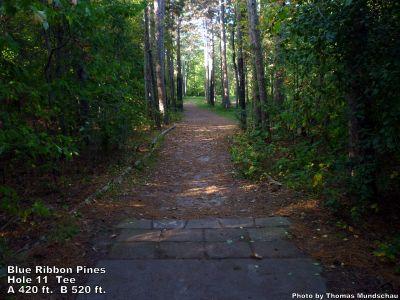 Blue Ribbon Pines, Main course, Hole 11 Tee pad
