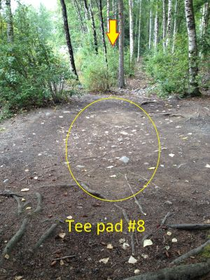 Schroeder Park, Main course, Hole 8 Tee pad