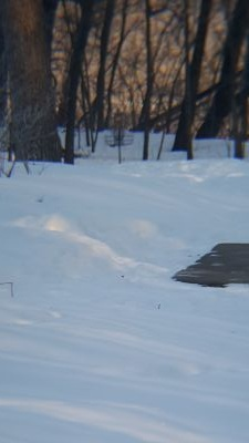C.P. Adams Park, Main course, Hole 1 Long tee pad