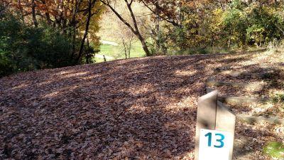 Bryant Lake Park, Main course, Hole 13 Long tee pad