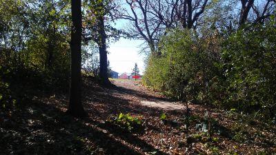 Staring Lake Park, Main course, Hole 6 Long tee pad