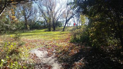 Staring Lake Park, Main course, Hole 4 Long tee pad