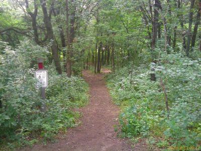 Calvary Hill Park, Main course, Hole 8 Tee pad