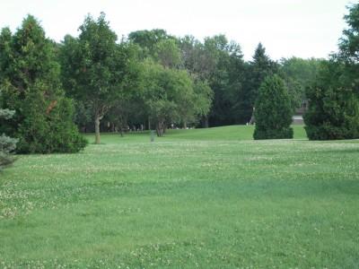 Plamann, Apple Creek, Hole 8 Tee pad