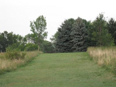 Plamann, Apple Creek, Hole 17 Tee pad