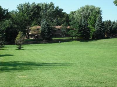 Crystal Lake Park, Main course, Hole 8 Tee pad