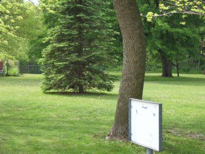 Dr. George W. Hilliard Park, Main course, Hole 1 Tee pad