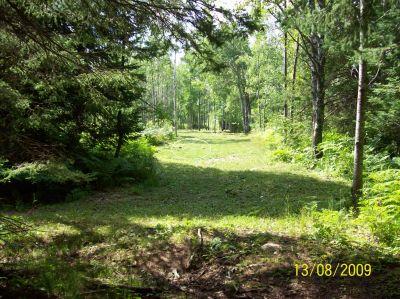 Black Bear Creek, Main course, Hole 9 Long tee pad