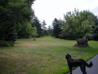 Burr Oak Groves, Main course, Hole 1 Tee pad