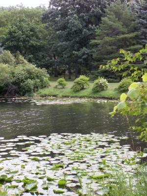 Burr Oak Groves, Main course, Hole 11 Tee pad