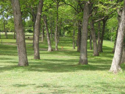 Lustig Park, Main course, Hole 4 Tee pad