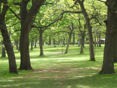 Lustig Park, Main course, Hole 3 Tee pad