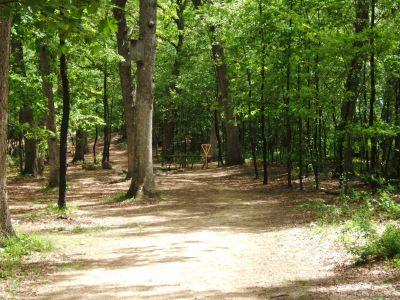 Lustig Park, Main course, Hole 10 Tee pad