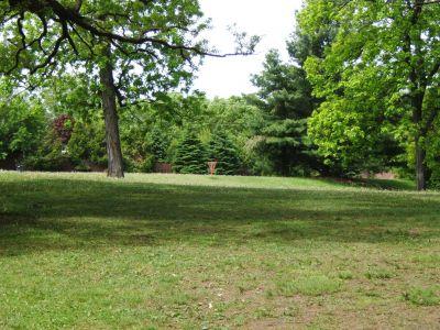 Lustig Park, Main course, Hole 6 Tee pad