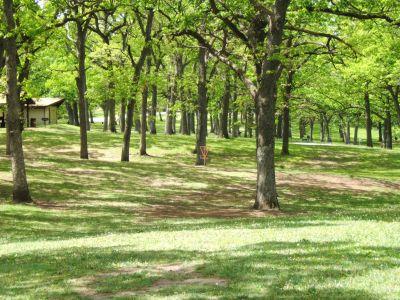 Lustig Park, Main course, Hole 18 Tee pad