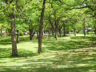 Lustig Park, Main course, Hole 17 Tee pad