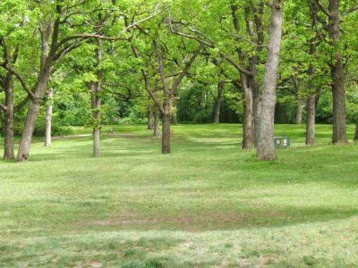 Lustig Park, Main course, Hole 1 Tee pad
