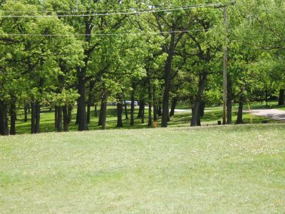 Lustig Park, Main course, Hole 7 Tee pad