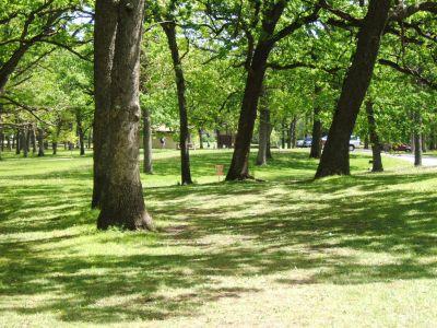 Lustig Park, Main course, Hole 8 Tee pad