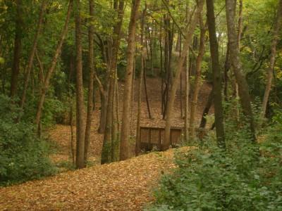 Grignon Park, Main course, Hole 8 Tee pad