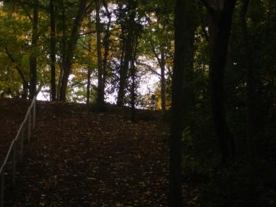 Grignon Park, Main course, Hole 9 Tee pad