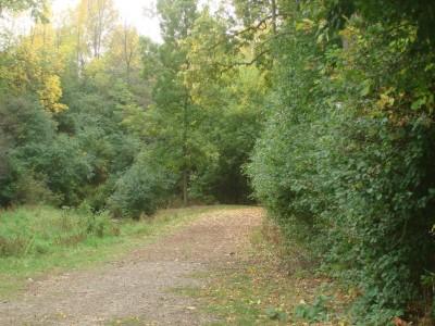 Grignon Park, Main course, Hole 17 Tee pad