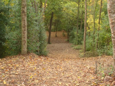 Grignon Park, Main course, Hole 3 Tee pad