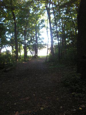 University of Wisconsin Parkside, East, Hole 14 Long approach