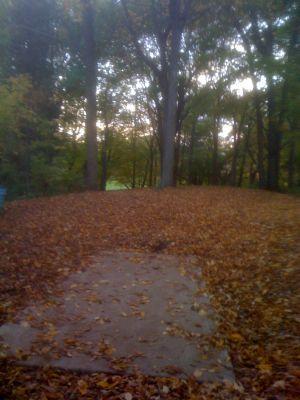 Silver Creek Park, Main course, Hole 18 Long tee pad