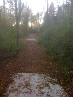 Silver Creek Park, Main course, Hole 17 Long tee pad