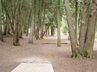 Silver Creek Park, Main course, Hole 1 Long tee pad