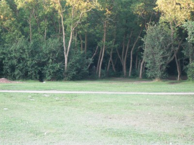O'Hauser Park, Main course, Hole 1 Tee pad