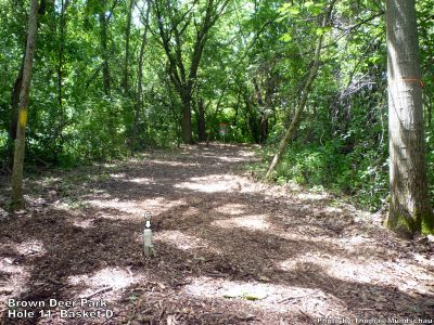 Brown Deer Park, Main course, Hole 11 Alternate pin