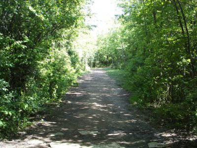 Dretzka Park, Main course, Hole 2 Tee pad