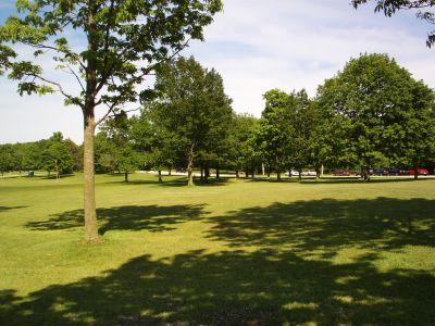 Dretzka Park, Main course, Hole 5 Tee pad