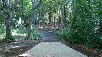 Tendick Nature Park, Main course, Hole 6 Tee pad