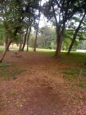 Fox River Park, Main course, Hole 1 Long tee pad
