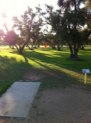 Los Olivos, Main course, Hole 8 Tee pad