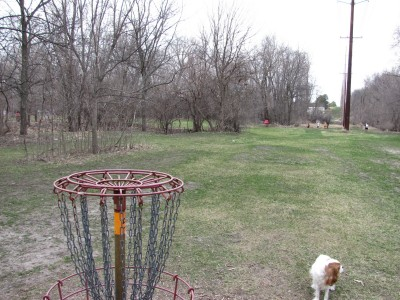 Iowa State University, Stable Run, Hole 5 Reverse (back up the fairway)