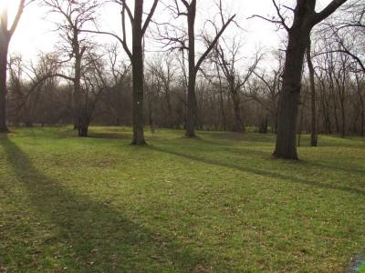 Iowa State University, Stable Run, Hole 12 Midrange approach