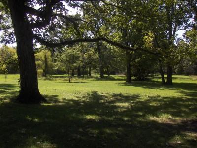 Heritage Park, Main course, Hole 13 Tee pad
