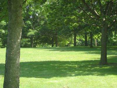 Middle Park, Main course, Hole 7 Tee pad