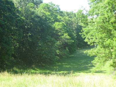 Middle Park, Main course, Hole 15 Tee pad
