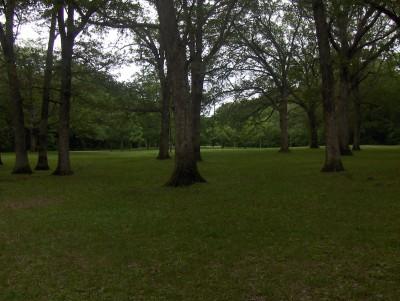 McHose Park, Main course, Hole 16 Short tee pad