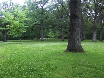McHose Park, Main course, Hole 15 Short tee pad
