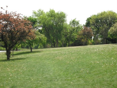Jones Park, Main course, Hole 2 Tee pad